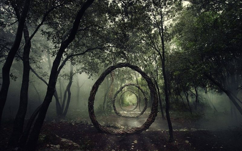 Мистический лес Хоя Бачи (Румыния)