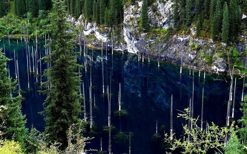 Лес под водой озера Каинды