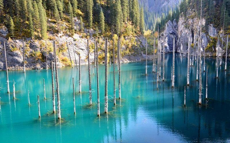 Озеро Каинды (подводный лес)