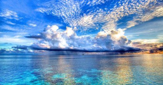 Удивительное об океане