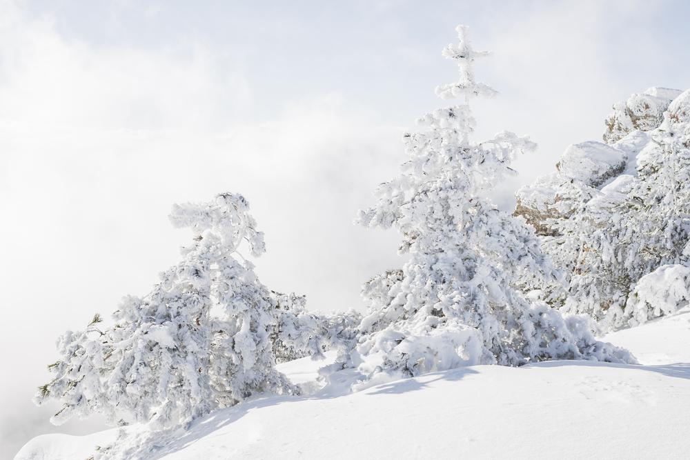 снег в декабре