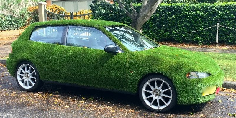 Grass cover on the car