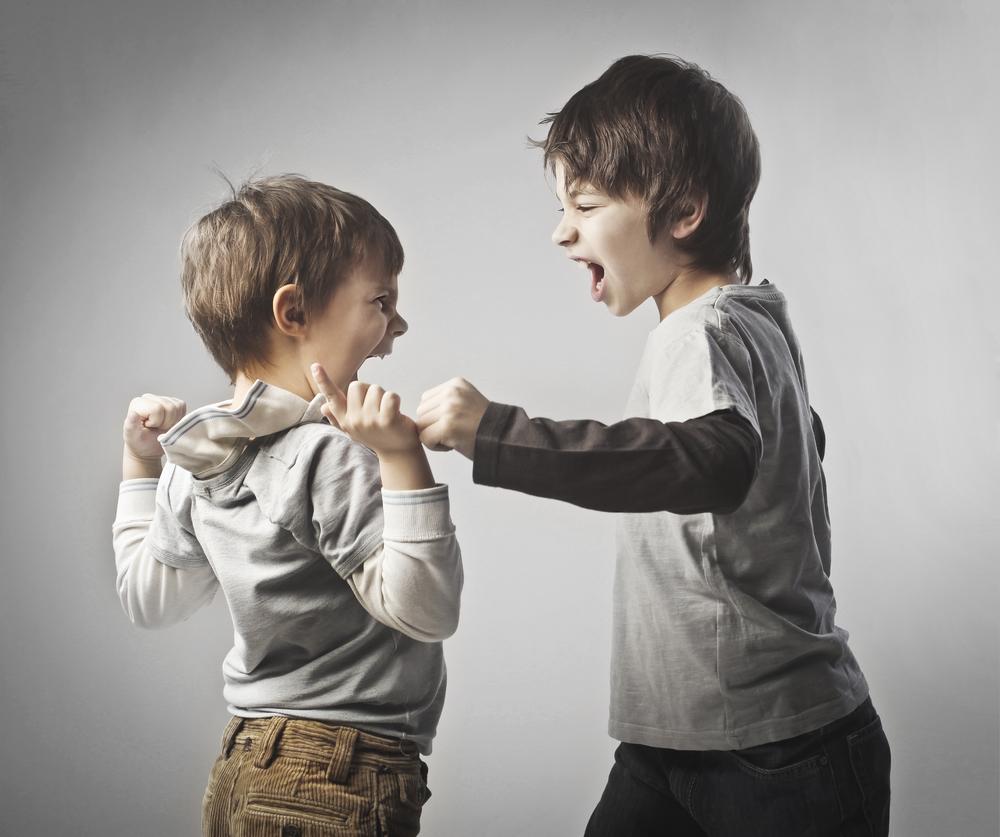 два брата дерутся