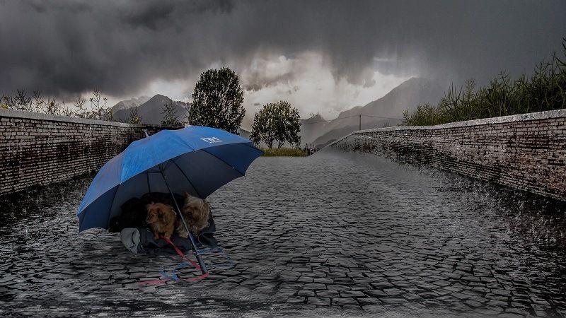 Интересные факты о дождях