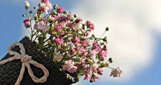 статусы про цветы девушкам