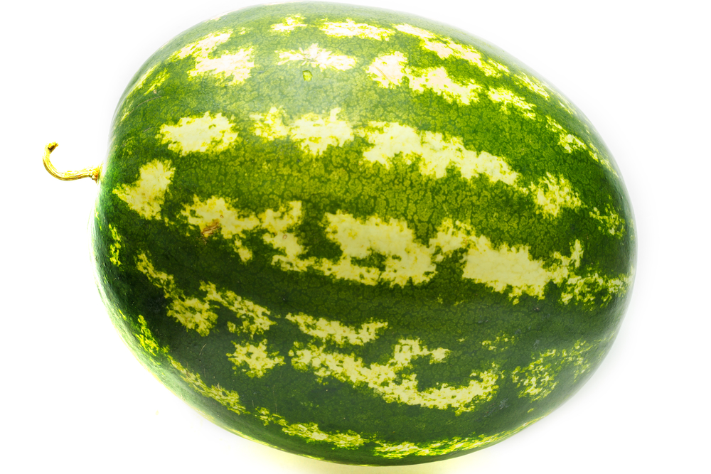 watermelon riddle