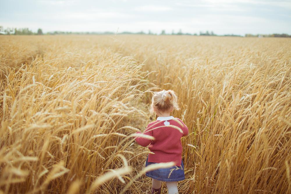 девочка в поле в августе
