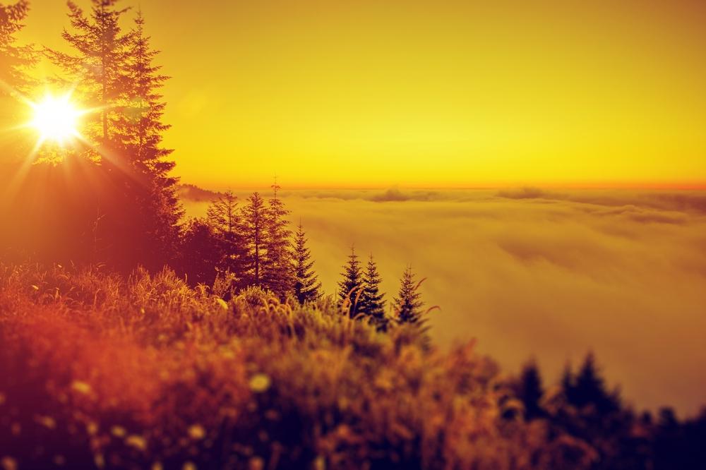живописный пейзаж в августе