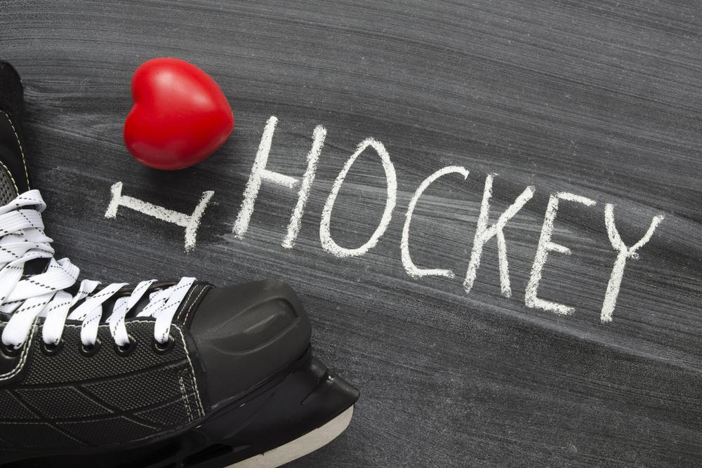 я люблю хоккей