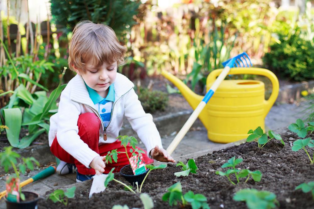 4-х-летний мальчик помогает в огороде