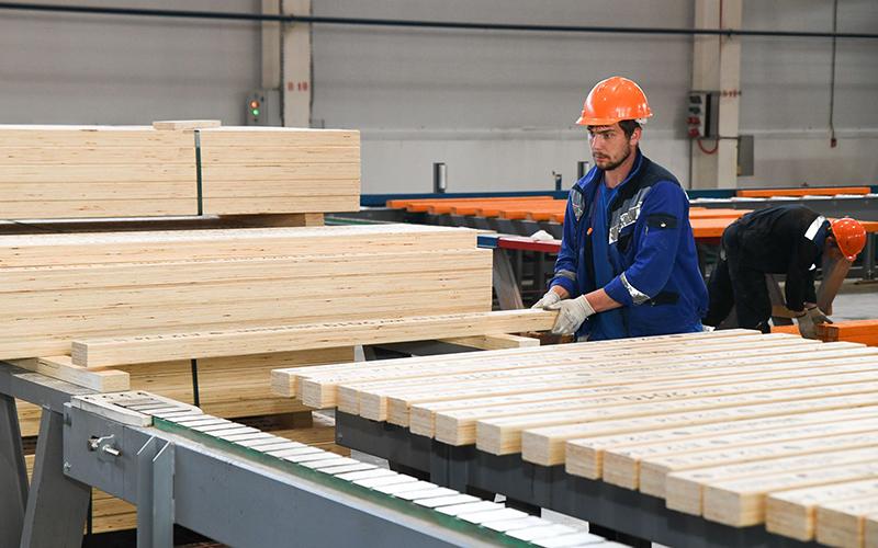Технология деревообработки - качества